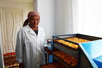 Кыргызстанды как менен камсыздоонун чети дагы оюла элек